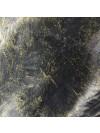 Bull Terrier - figurine - 124 - 21898