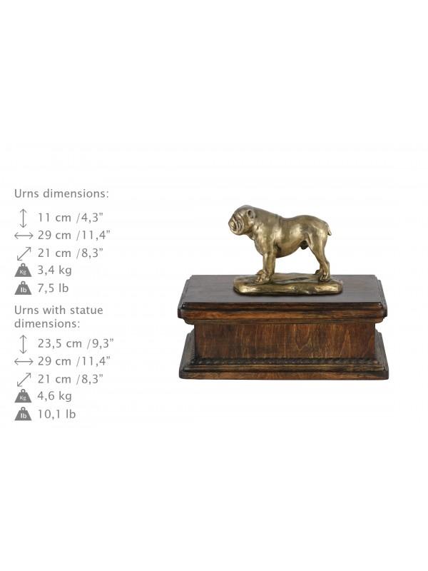 English Bulldog 2- exlusive urn