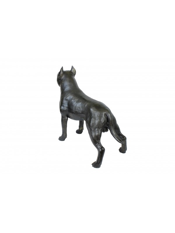 American Staffordshire Terrier - statue (resin) - 4691 - 41897