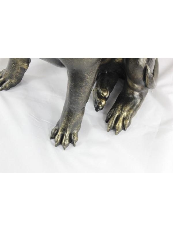 Bull Terrier - statue (resin) - 1511 - 21669