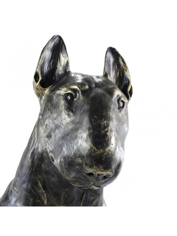 Bull Terrier - statue (resin) - 16 - 21642