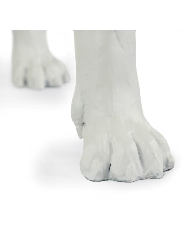 Bull Terrier - statue (resin) - 16 - 21654