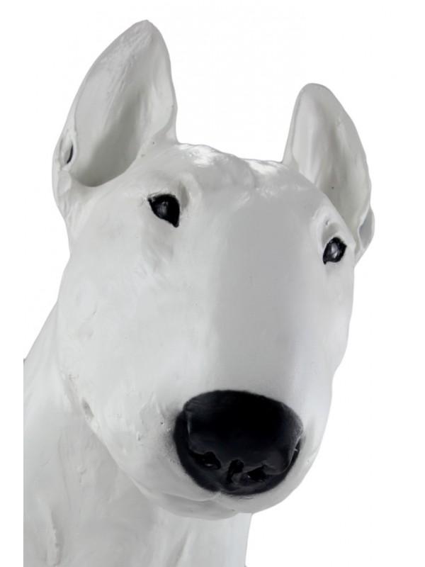 Bull Terrier - statue (resin) - 16 - 21655