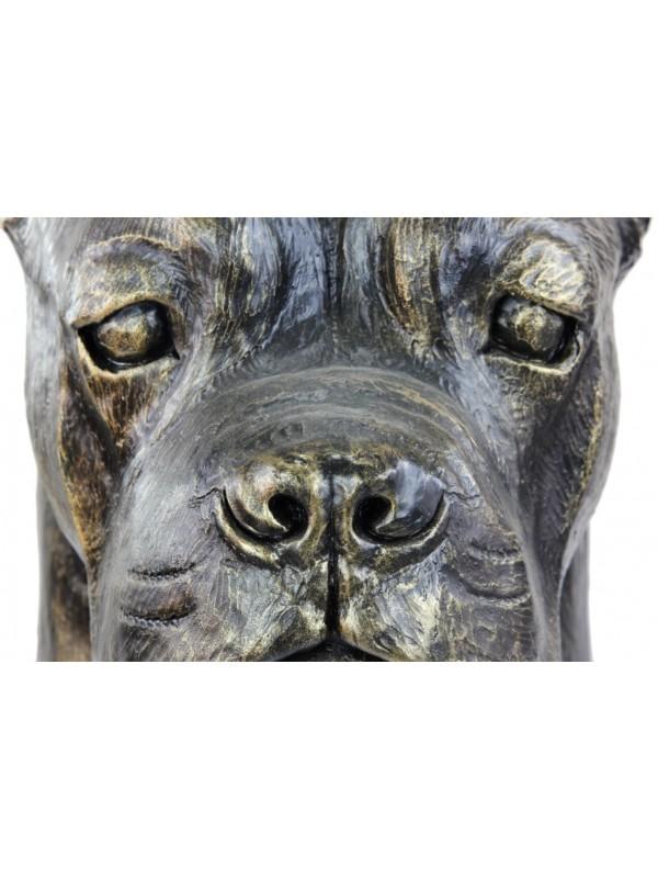 Cane Corso - figurine - 127 - 21919