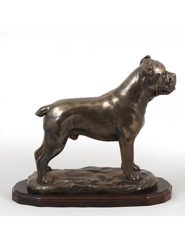 Cane Corso - figurine (bronze) - 660 - 2972