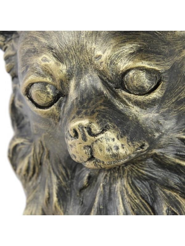 Chihuahua Long Coat - figurine (resin) - 676 - 16315