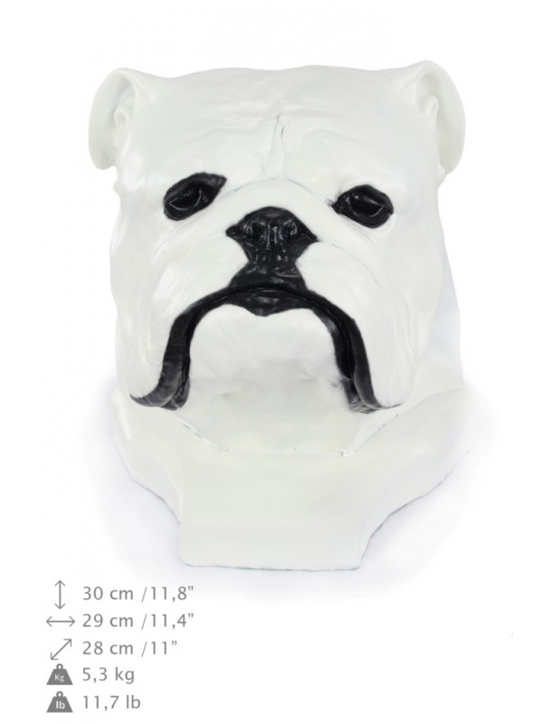 English Bulldog - figurine - 122 - 21868