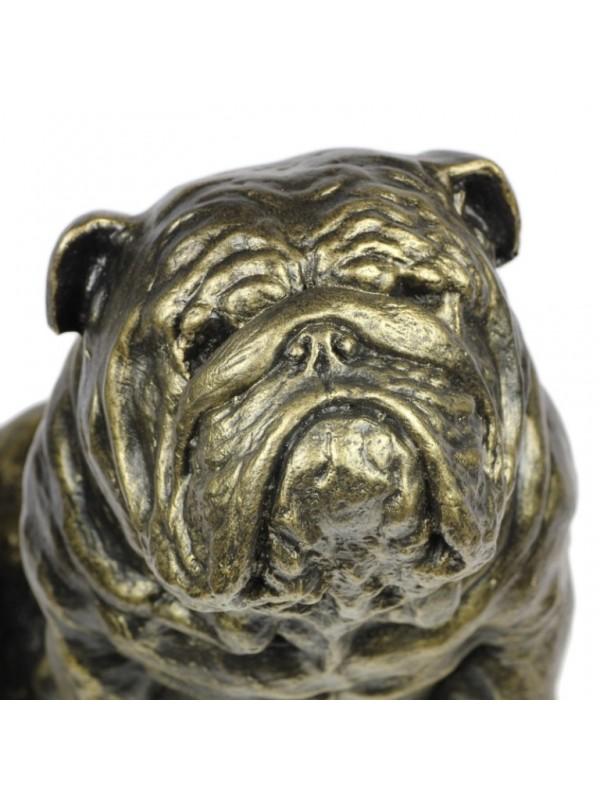 English Bulldog - figurine (resin) - 363 - 16263