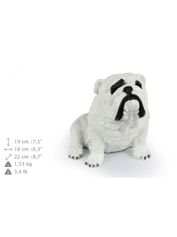 English Bulldog - figurine (resin) - 363 - 16334