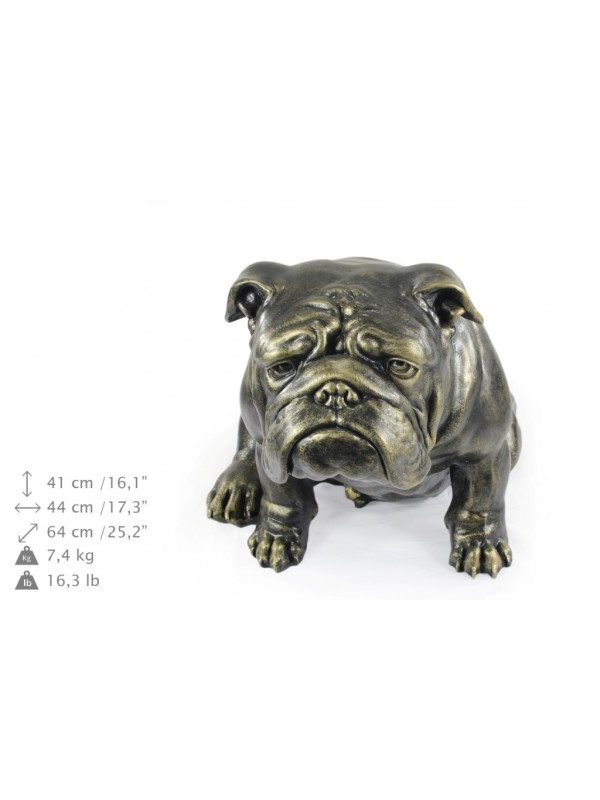 English Bulldog - statue (resin) - 654 - 21685