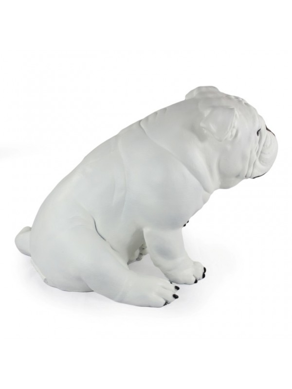English Bulldog - statue (resin) - 654 - 21704