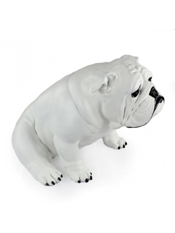 English Bulldog - statue (resin) - 654 - 21705