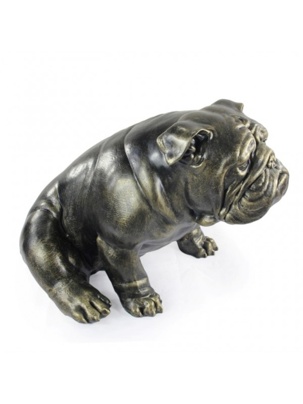 English Bulldog - statue (resin) - 654 - 21693