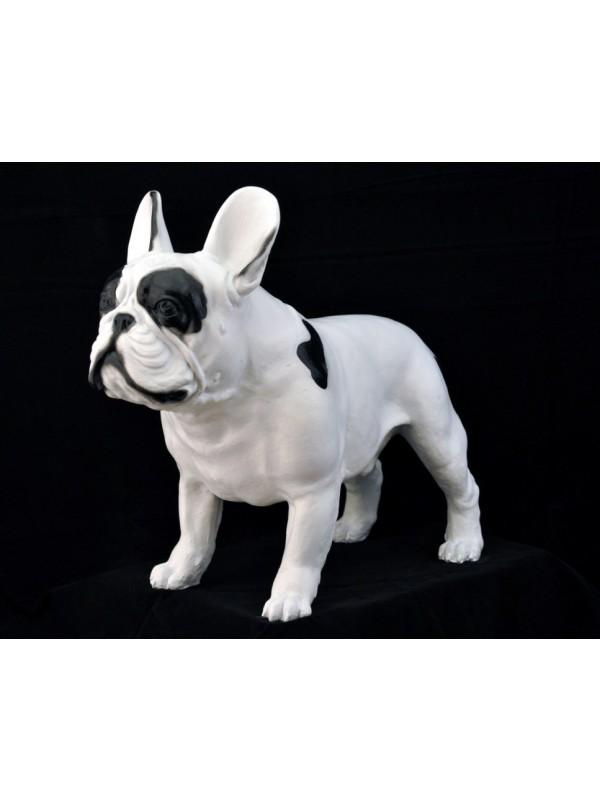 French Bulldog - statue (resin) - 2 - 63