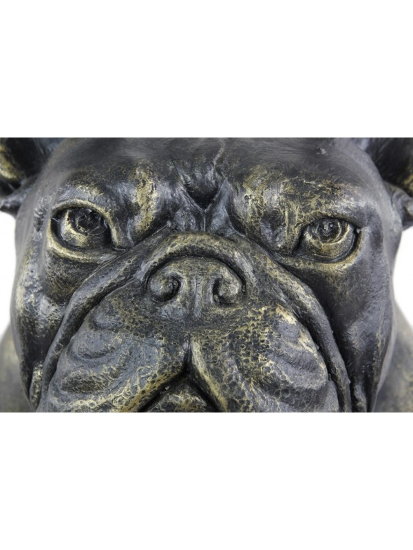 French Bulldog - statue (resin) - 661 - 21762