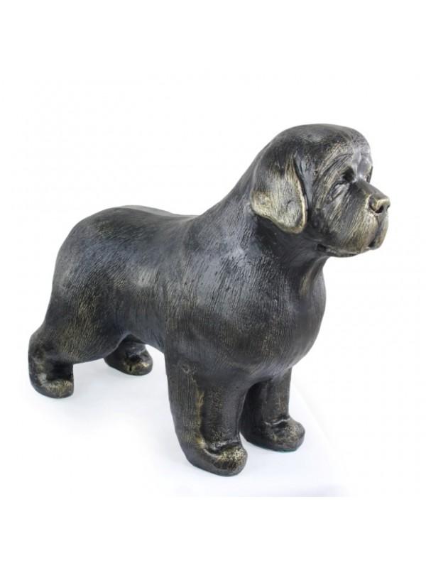 Newfoundland  - statue (resin) - 627 - 21726
