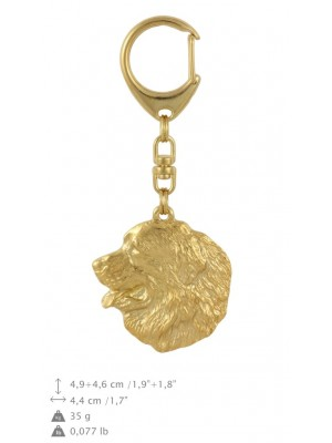 Bernese Mountain Dog - keyring (gold plating) - 794 - 29120