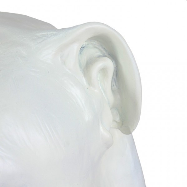 English Bulldog - figurine - 122 - 21876