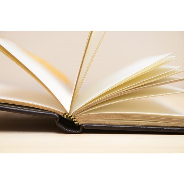 Rottweiler - notepad - 3459 - 35005